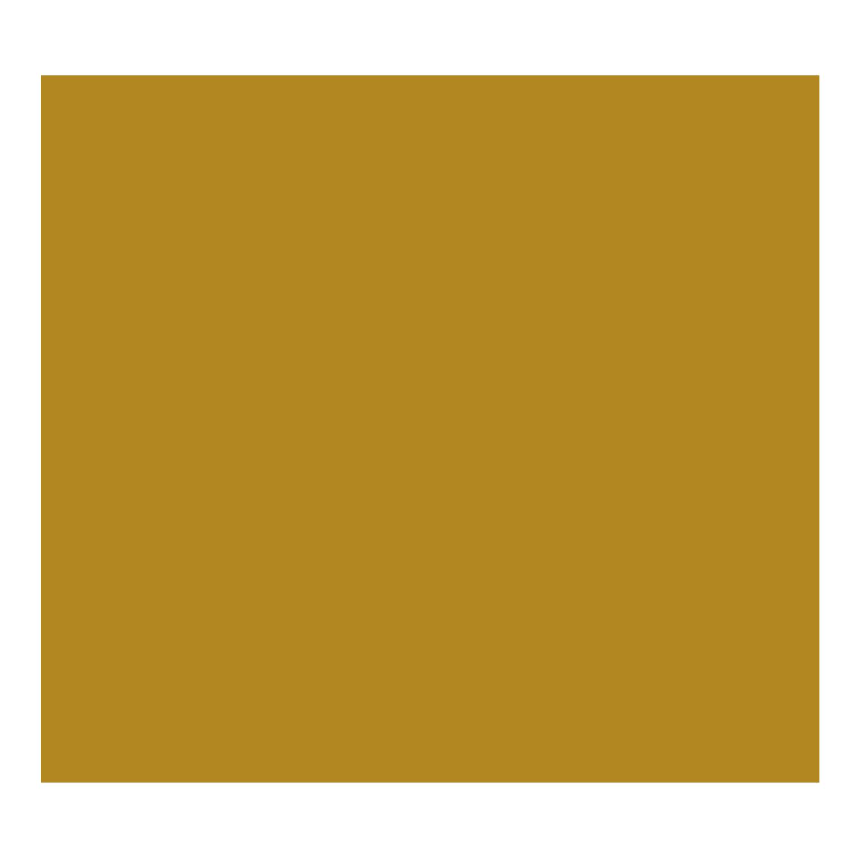 Anisch-dl-Cara-Logo-kopf